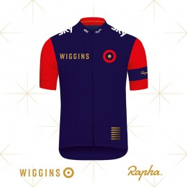 Wiggins_Press_Release_Image.jpg
