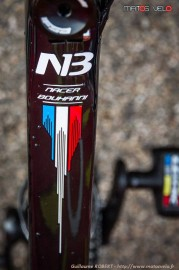 Paris-Nice-2015-detail-003.jpg