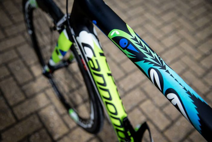 Cannondale-TDF2014-zoom.jpg