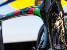Specialized-S-Works-Tarmac-Peter-Sagan-TDF16-001.jpg